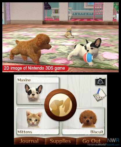 Nintendogs And Cats All Dog Breeds