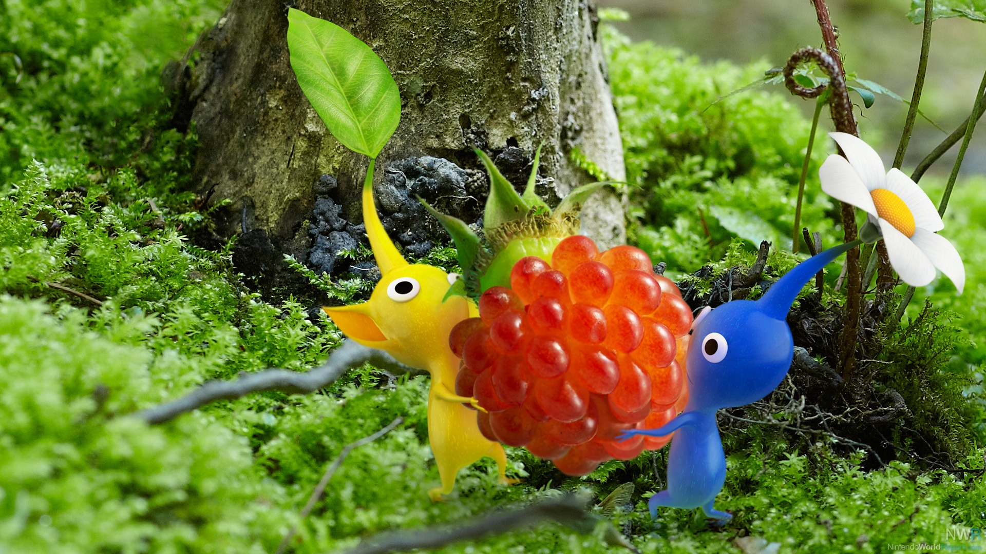 Pikmin picture