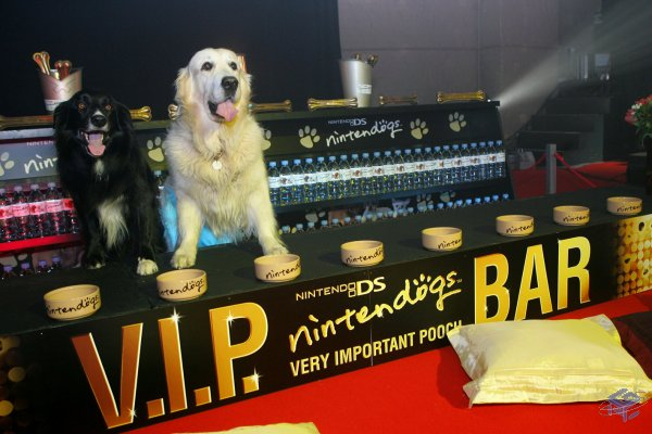 The Puppy Party VIP Bar