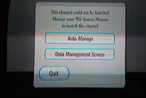 Game Developers Conference 2009: Wii SD Card Menu - Auto Manage screen