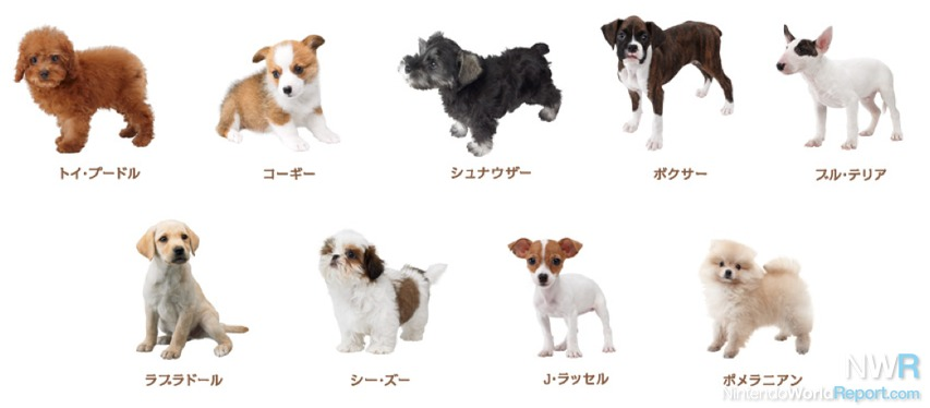 Nintendogs + Cats Breed Lists Revealed